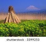 bundles of tall grass drying... | Shutterstock . vector #3399253