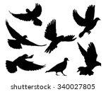 Stock vector silhouettes of doves in many different flying positions and angles 340027805