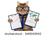 funny cat with a folder for...