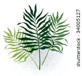 three green vegetative twigs... | Shutterstock .eps vector #34005127
