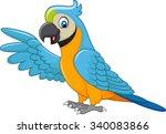 cartoon macaw presenting... | Shutterstock . vector #340083866