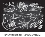 hand drawn set of herbs and...   Shutterstock .eps vector #340729832
