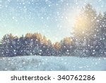 Winter Snow Scene With Forest...