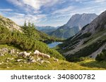 sheep with lake seebensee and...   Shutterstock . vector #340800782