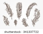 ethnic feathers. tribal... | Shutterstock .eps vector #341337722