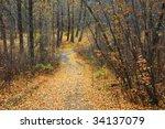 a serene winding hiking trail... | Shutterstock . vector #34137079