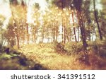blurred abstract photo of light ... | Shutterstock . vector #341391512