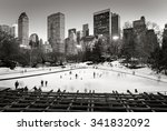 Central Park Winter Scene And...