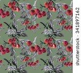 watercolor garden ripe cherries ... | Shutterstock . vector #341897162