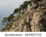 cliff with green trees  | Shutterstock . vector #341901722