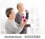 happy senior couple exercising... | Shutterstock . vector #342025082