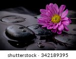 The Flower On River Stones Spa...