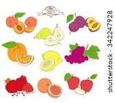 vector illustration set of... | Shutterstock .eps vector #342247928