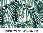 tropical palm leaves seamless... | Shutterstock .eps vector #342307445