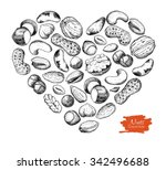 vector hand drawn nuts... | Shutterstock .eps vector #342496688