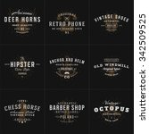 set of hipster vintage labels ... | Shutterstock .eps vector #342509525