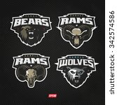 modern professional logo set... | Shutterstock .eps vector #342574586