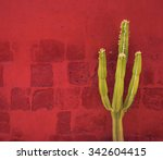 Green Cactus Over Red Wall ...