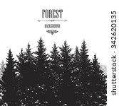 fir tree border. forest... | Shutterstock .eps vector #342620135