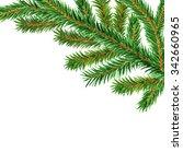 watercolor fir tree  spruce... | Shutterstock . vector #342660965