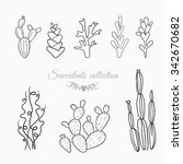set of cactuses and succulents  ... | Shutterstock .eps vector #342670682