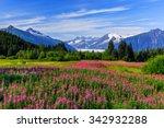 juneau  alaska. mendenhall... | Shutterstock . vector #342932288