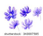 a set of watercolor flower... | Shutterstock . vector #343007585