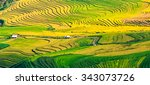 terraced fileds in northern... | Shutterstock . vector #343073726