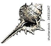 murex shell | Shutterstock .eps vector #34331347
