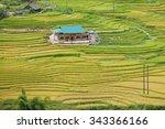 laocai vietnam september 6 2015 ... | Shutterstock . vector #343366166