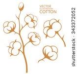 cotton. vector illustration.... | Shutterstock .eps vector #343372052