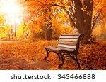 Rural Wooden Bench.  Autumn...