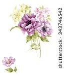watercolor illustration bouquet ... | Shutterstock . vector #343746542