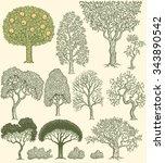 Trees. Design Set. Hand Drawn...