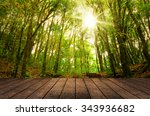 wood floor textured in on the... | Shutterstock . vector #343936682