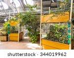 san francisco  usa   oct 5 ... | Shutterstock . vector #344019962