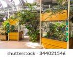 san francisco  usa   oct 5 ... | Shutterstock . vector #344021546