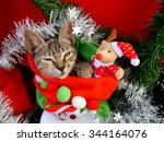 merry christmas and a happy new ... | Shutterstock . vector #344164076