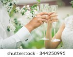 bride and groom holding wedding ... | Shutterstock . vector #344250995