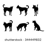 Stock vector set of dog silhouette on white 344449832
