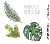 Watercolor Set Exotic Palm...