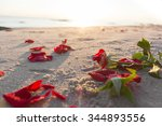 Withered Red Rose On  Beach...