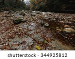 Autumn Forest And Waterfalls O...