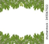 christmas tree pine branches... | Shutterstock .eps vector #345067022