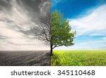 one tree in field | Shutterstock . vector #345110468