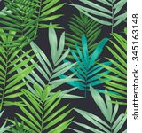 vector illustration of palm... | Shutterstock .eps vector #345163148