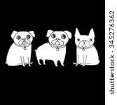 french bulldog dog on a leash.... | Shutterstock .eps vector #345276362