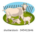 vector image of a goat and her... | Shutterstock .eps vector #345412646