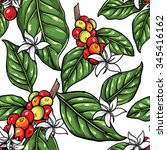 coffee plant pattern 1 | Shutterstock .eps vector #345416162