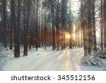Frosty Winter Landscape In...